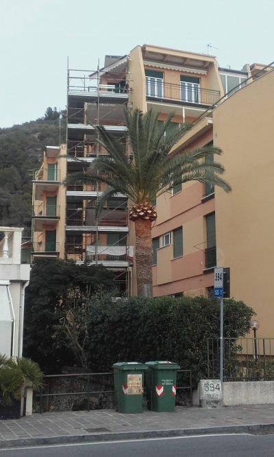 Immagine: Vista lato Aurelia